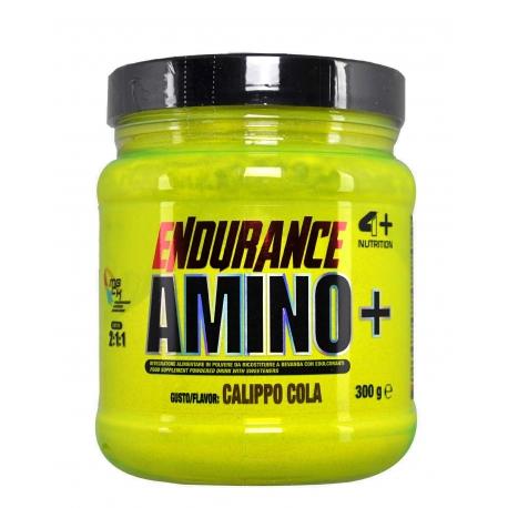 4+ Endurance Amino+