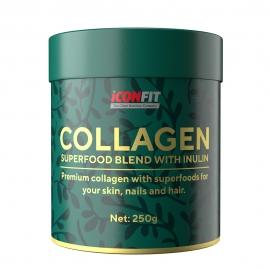 ICONFIT Collagen + Inulin